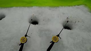 Подводная камера для рыбалки омск