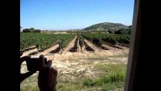 preview picture of video 'Torres Winery Barcelona Spain'