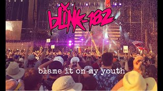 Blink 182   Blame It On My Youth (Music Video)