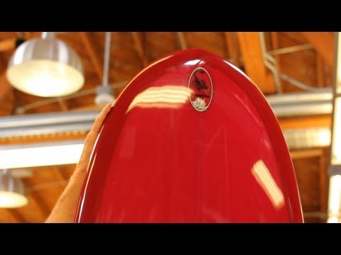 9 Facts about Surfboard Nose Shapes | Surfboard Basics