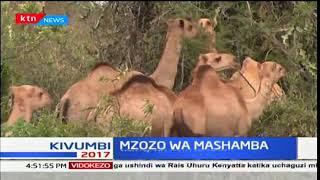 Wakazi wa kaunti ya Taita Taveta wataka gavana Granton Samboja teule kushughulikia masuala ya mifugo