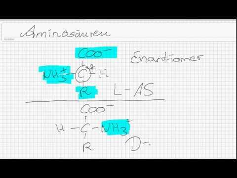 Aminosäuren Teil 1