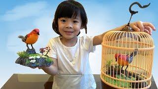 Trò Chơi Bé Tập Nuôi Chim – AnAn Bóc Kẹo Cho Chim Ăn ❤ AnAn ToysReview TV ❤