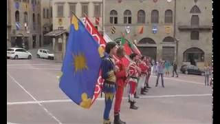 Arezzo 2017 -  Raduno Mondiale del Bracco Italiano. Piazza Grande