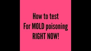 How You Can Test Yourself for Mold Poisoning RIGHT NOW! - Video Youtube