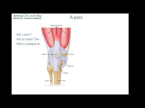 A láb kicsi csontok ízületi kezelése