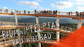 preview picture of video 'Baumwipfelpfad Bad Wildbad (Treetop Trail)'