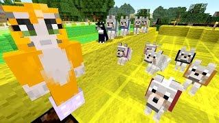 Minecraft Xbox - Fairy Lights [361]