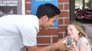 Zach King Magic Vines Revealed Compilation 2018 | Best Zach King Magic Tricks Show Ever