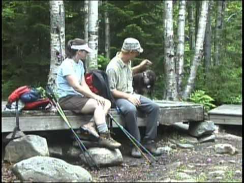 Take a Hike: Crocker Mountain