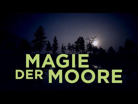 Скачать фильмы торрент магия лунного света