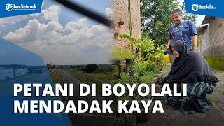 Petani di Boyolali Jadi Miliarder Dadakan dari Proyek Tol Solo-Jogja: Ogah Borong Mobil
