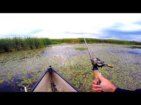 The BEST fishing canoe - смотреть онлайн на Hah Life