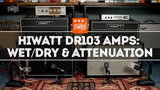 Vintage Hiwatt DR103 Amps: WetDry, Plus UA OX & Fryette Attenuators – That Pedal Show
