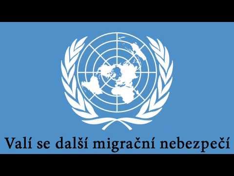 Tomio Okamura: Valí se další migrační nebezpečí