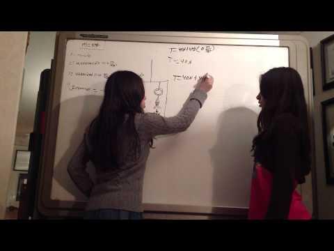 Cálculo del peso de un pescado en un elevador. Física