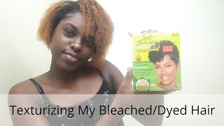 TEXTURIZING MY BLEACHED/ DYED HAIR    SOFT & BEAUTIFUL BOTONICALS