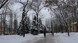 Heavy Snow At Taras Shevchenko Park & Kyiv National University, Kyiv, Ukraine