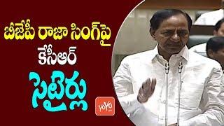 CM KCR Satires On BJP Raja Singh In Telangana Assembly   Harish Rao   YOYO TV Channel