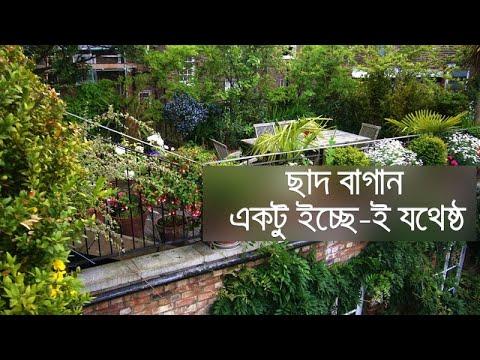 ছাদ বাগান: একটু ইচ্ছেই যথেষ্ট