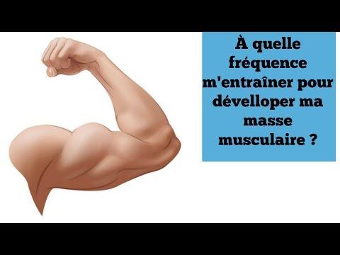 Le schéma des muscles de la personne avec les noms laffiche
