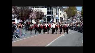 preview picture of video 'Carnaval de Cholet 2013 (49)'