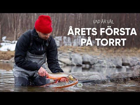 Tørfluefiskeri efter ørreder i Ransarån i Sverige