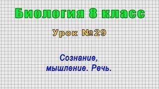 Биология 8 класс Урок 29