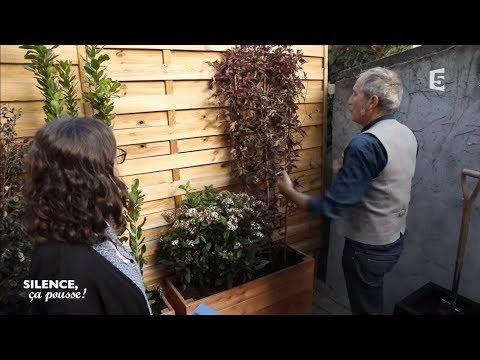 Pas de panique chez Claire : végétaliser une terrasse en bois