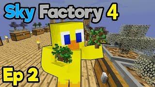 First Choco Prank ! (also Twilight Forest) | Minecraft