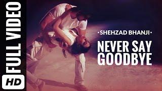 Never Say Goodbye - shezbhanji