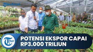 Menkop dan UMKM RI Kunjungi Pengusaha Tanaman Hias di Bogor, Potensi Ekspor Capai Rp3.000 Triliun