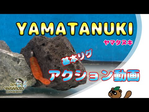Gary YAMAMOTO ~2.5″ヤマタヌキ~