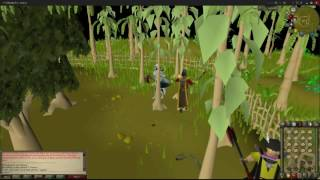 Osrs Mousekeys Guide Dropping Banking Custom How Get More Xp
