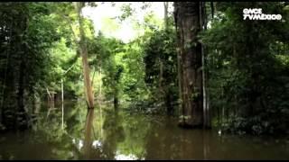 Diario de viaje - Brasil, Manaos