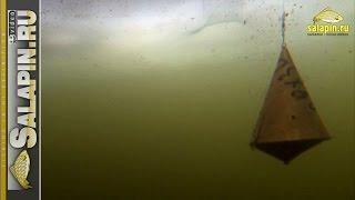 Кормушка для рыб на удочку спб