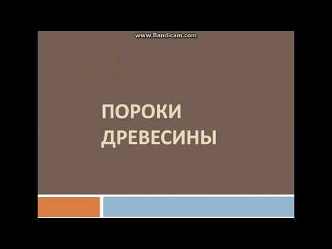 Пороки древесины видео