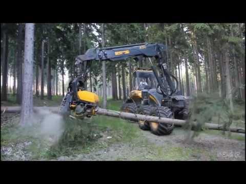 Как быстро спилить дерево. Профессиональная техника видео