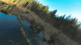 Mountain Woods | FPV Freestyle