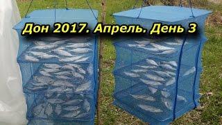Весенняя рыбалка на дону в апреле