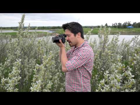 Panasonic FZ1000 Hands-On Field Test