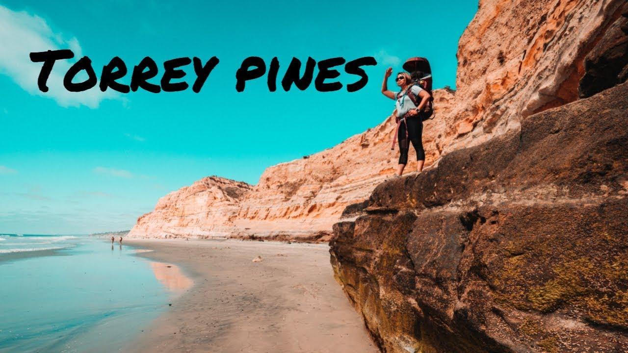 See Torrey Pines State Natural Reserve