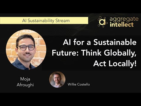 AI for a Sustainable Future: Think Globally, Act Locally!
