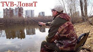 ЛОВЛЯ НА МАТЧ, БОЛОНКУ, ФИДЕР | Две рыбалки и я облажался!! Безжизненный пруд!