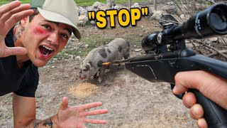 Saving a PIG from being SHOT by OWNER!! *NEW PIG*
