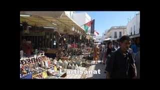 preview picture of video 'Présentation de Nabeul'