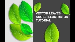 How To  Create  Vector Leaves In Adobe Illustrator Tutorial
