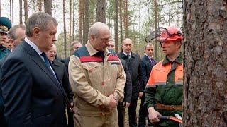 Лукашенко: сельское хозяйство и лесные угодья - наш огромный ресурс, который мы должны использовать