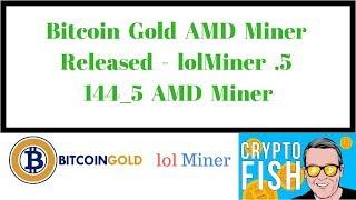 Bitcoin Gold AMD Miner Released - lolMiner  .5 144_5 AMD Miner