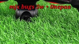 Mjx bugs 5w + onepaa